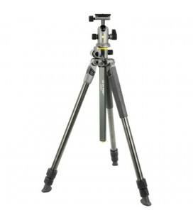 VANGUARD High PRO 2 + 263CB carbonio + patella BH-100 KIT